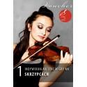 Voucher - 1 lekcja gry na skrzypcach