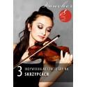 Voucher - 3 lekcje gry na skrzypcach