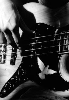 gitara-basowa